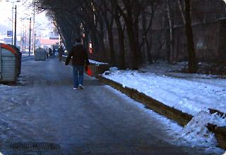 歩道がビタビタ