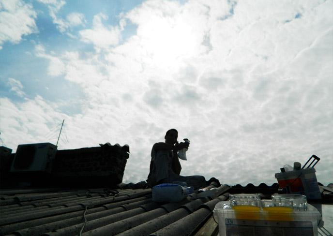 屋根修理が済んだ