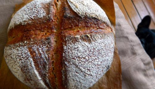 パンを作ってみた