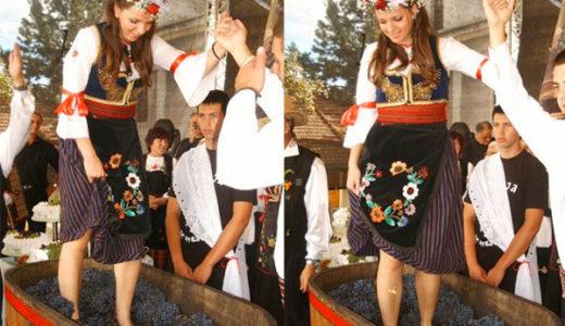 ぶどうの収穫祭 with ワイン娘