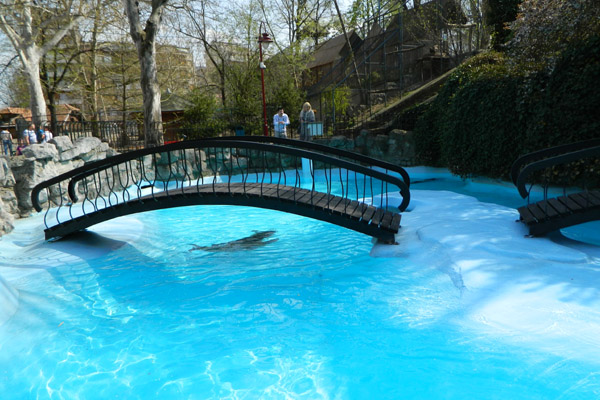 """動物と人間の距離が近い、というか触れる """"ベオグラード動物園"""" で大人も童心に"""