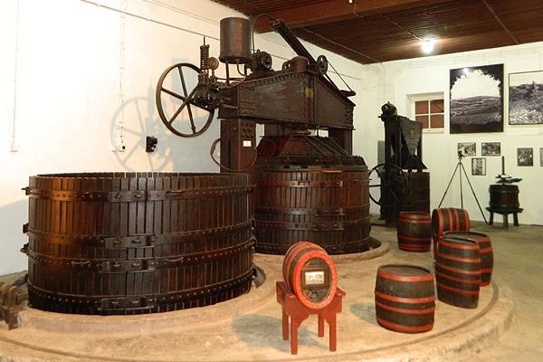 """トポラの有名ワイン """"Aleksandrovic"""" ワイナリーからのお薦めは?(2)"""
