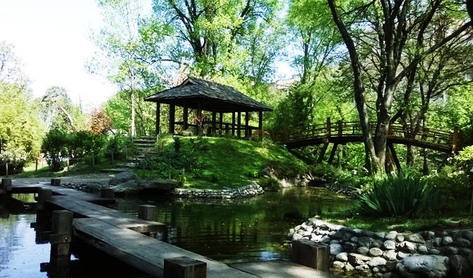 ベオグラード植物園 の『日本庭園』でお花見を