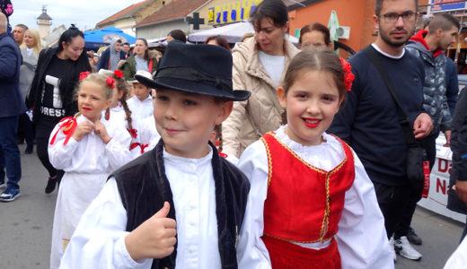 【フトグ/Futog】サルマの本場でキャベツ祭り