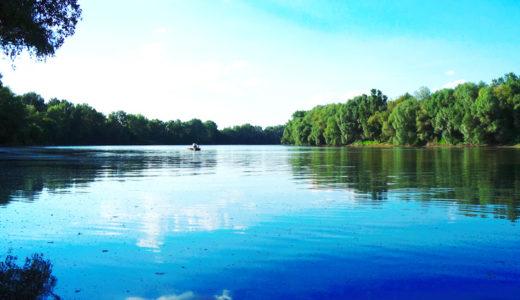 【ヨーロッパ最大規模】数百万匹のカゲロウが舞う川・ティサ川